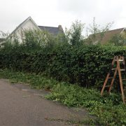 DR Tømrermester – haveservice 6